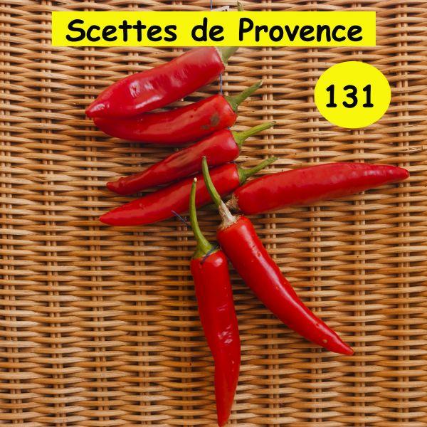 """""""Sccettes de Provence"""""""