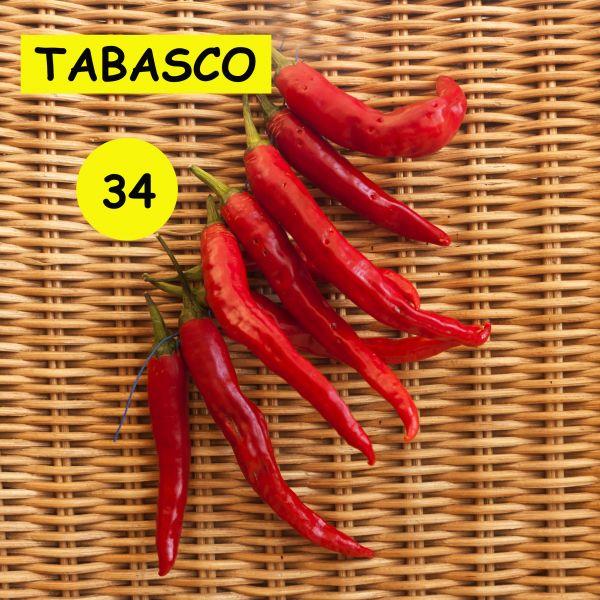 """""""Tabasco"""" Chili Samen"""