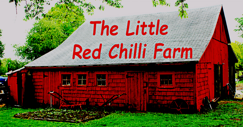 Little Red Chili Farm